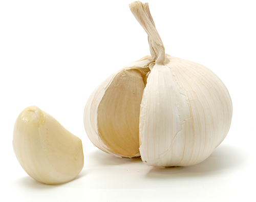 enema-recipes-garlic-enema